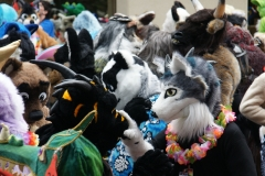 FurSuits-Gallery09