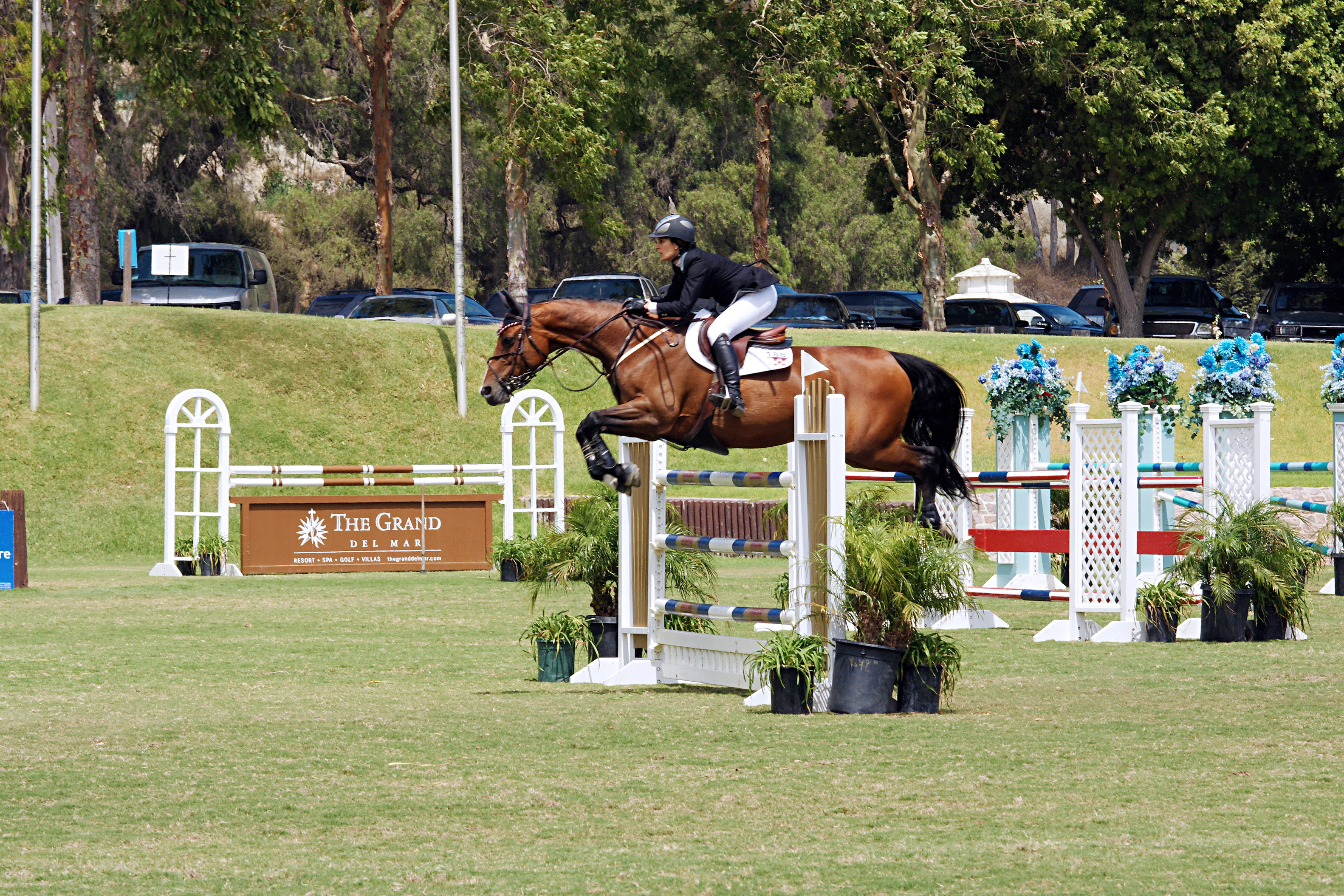 Del-Mar-Horse-Park-In-the-Air-Gallery02
