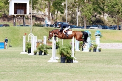 Del-Mar-Horse-Park-In-the-Air-Gallery04