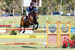 Del-Mar-Horse-Park-In-the-Air-Gallery10