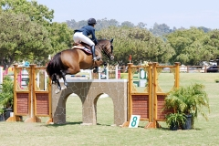Del-Mar-Horse-Park-In-the-Air-Gallery11