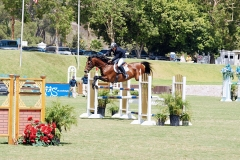 Del-Mar-Horse-Park-In-the-Air-Gallery12