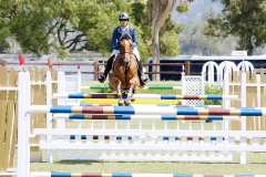 Del-Mar-Horse-Park-In-the-Air-Gallery14