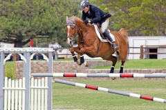 Del-Mar-Horse-Park-In-the-Air-Gallery18