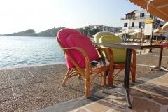 Samos-Greek-Cats31