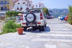 Samos-Greek-Cats63