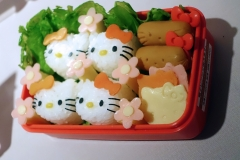 Hello-Kitty-For-Everyone10