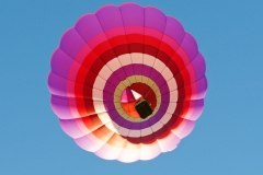 aibf-Single-Balloons-Gallery08