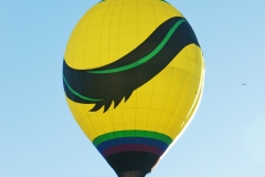 aibf-Single-Balloons-Gallery13