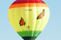 aibf-Single-Balloons-Gallery16