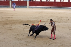 Tauromaquia-Banderilleros-Gallery06