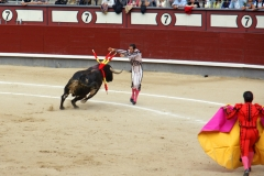 Tauromaquia-Banderilleros-Gallery13