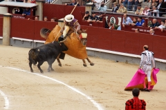Tauromaquia-Picadores-Gallery02
