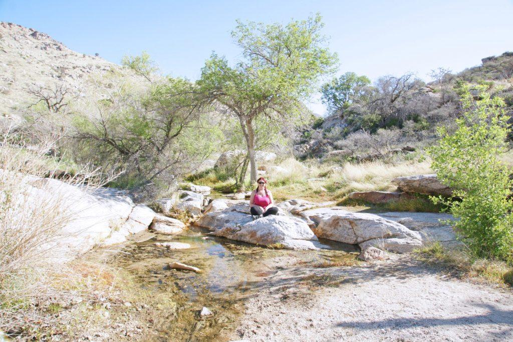 Relaxing on an island in Arizona.