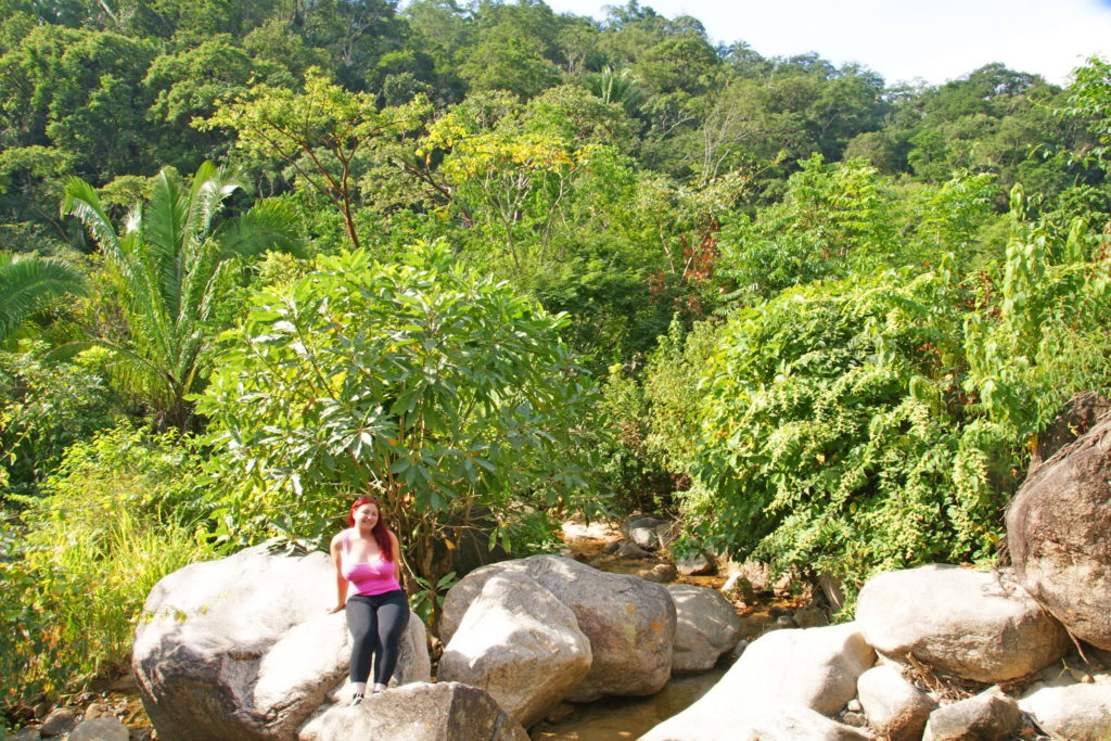 El Edén de Vallarta Jungle.