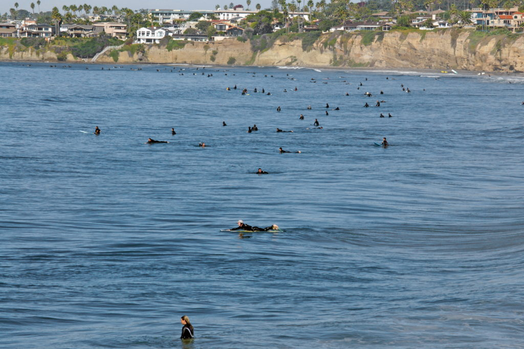 Surfers lined up, waiting for the perfect wave.