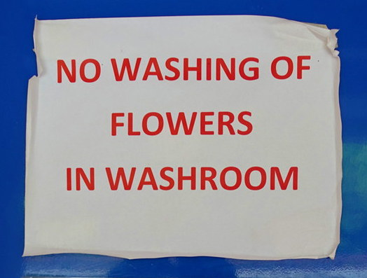 And just where am I supposed to wash my flowers?