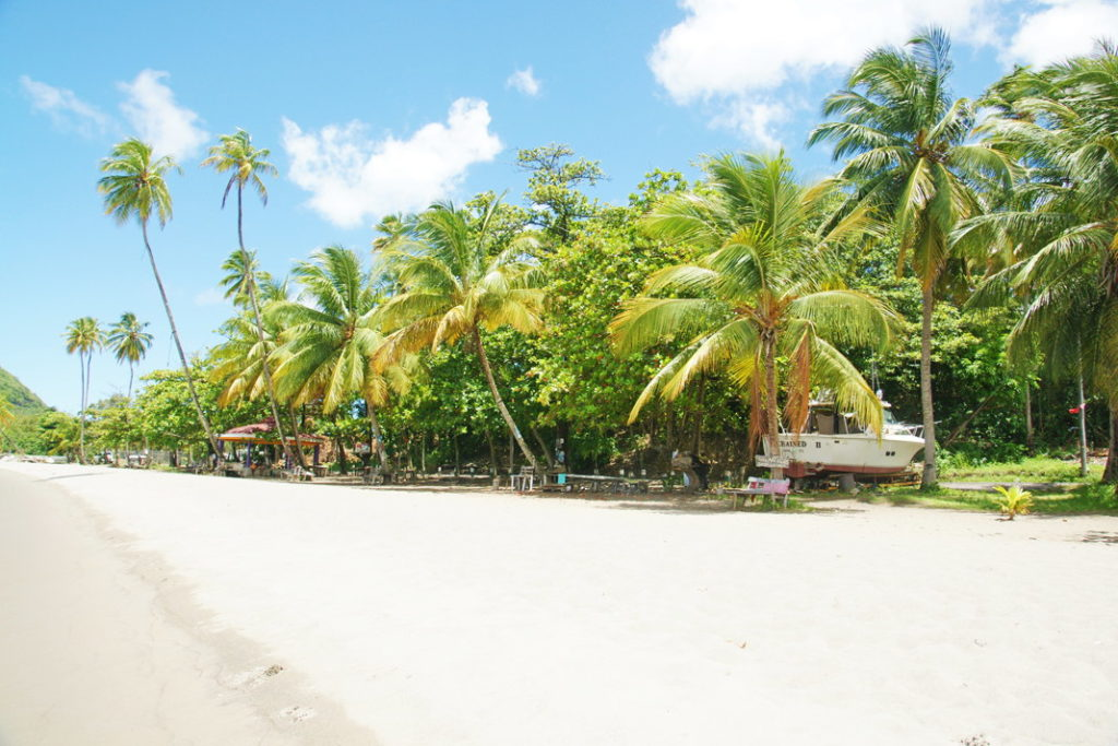 One of the beautiful beaches of Dominica.