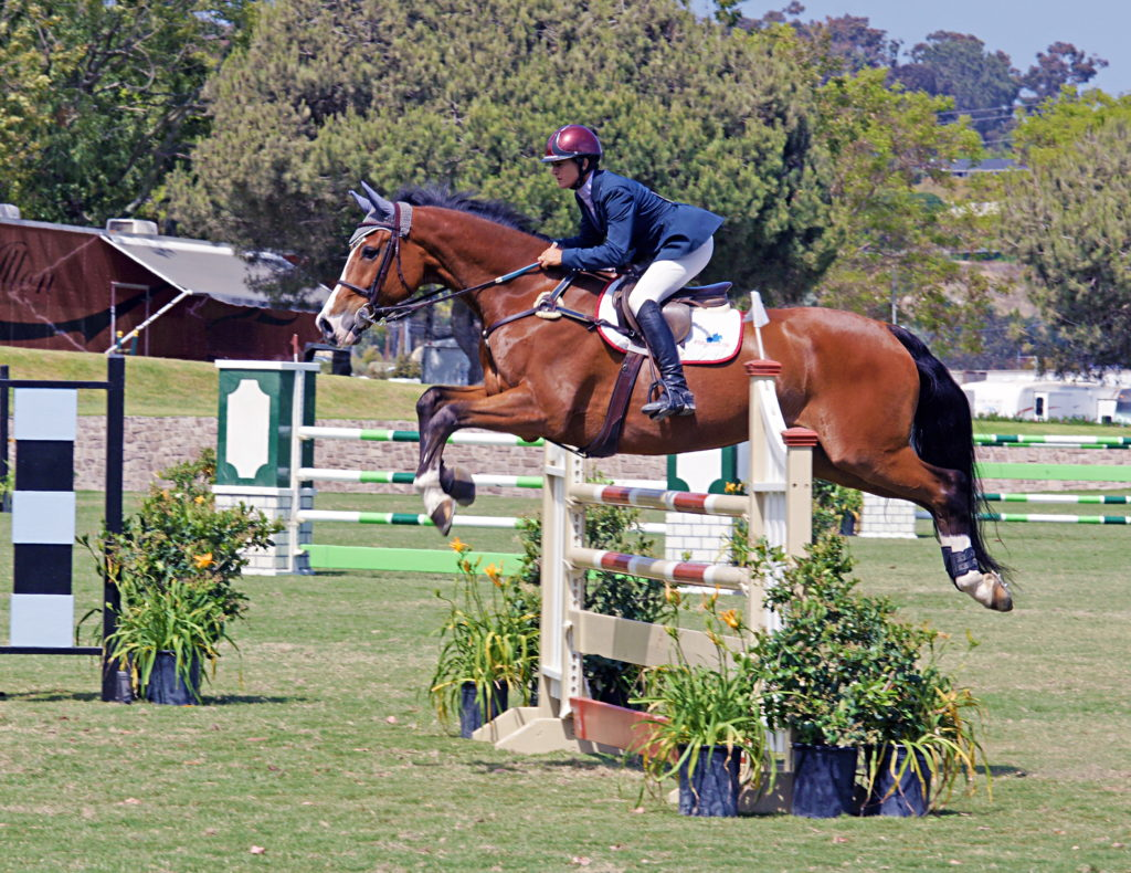 Horse and rider in a perfectly-executed jump,