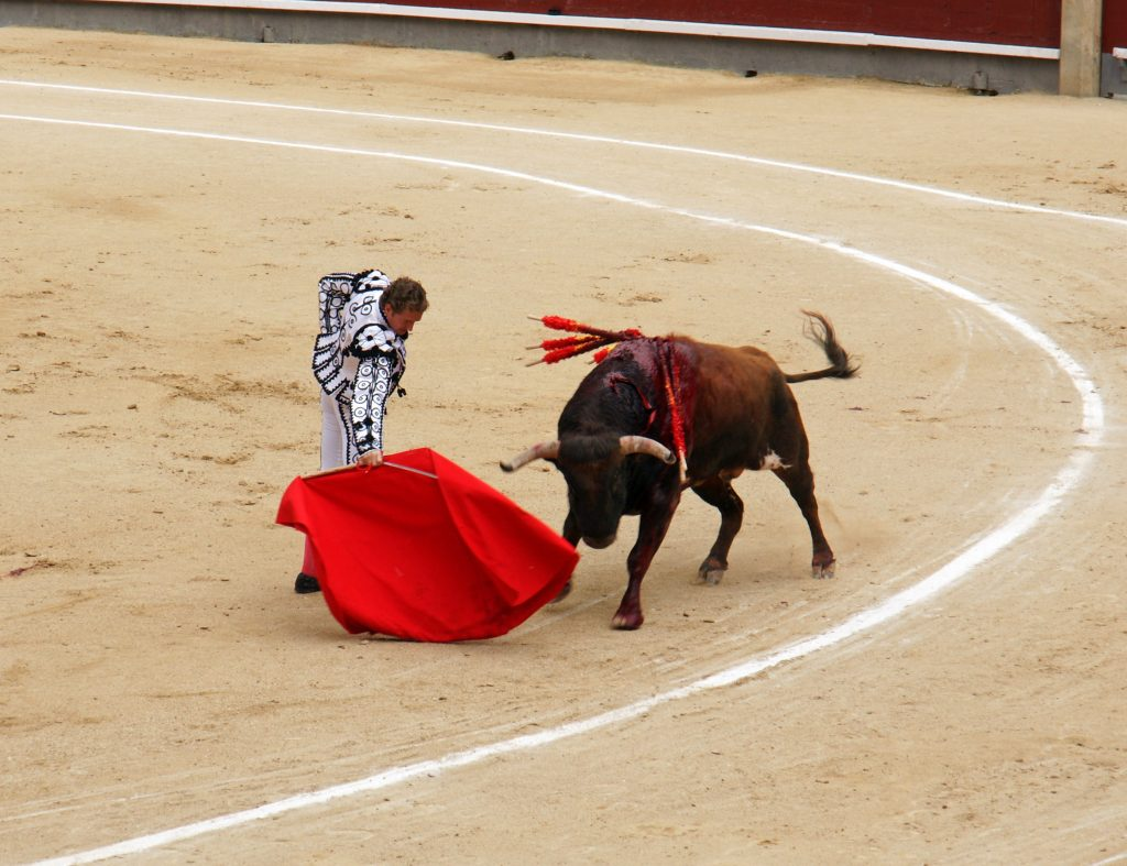 The matador is able to control the bull with his cape.