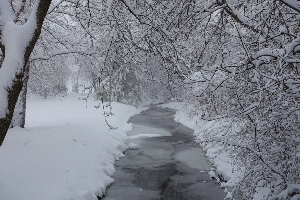 A wintery creek on a wintery day: wintery.