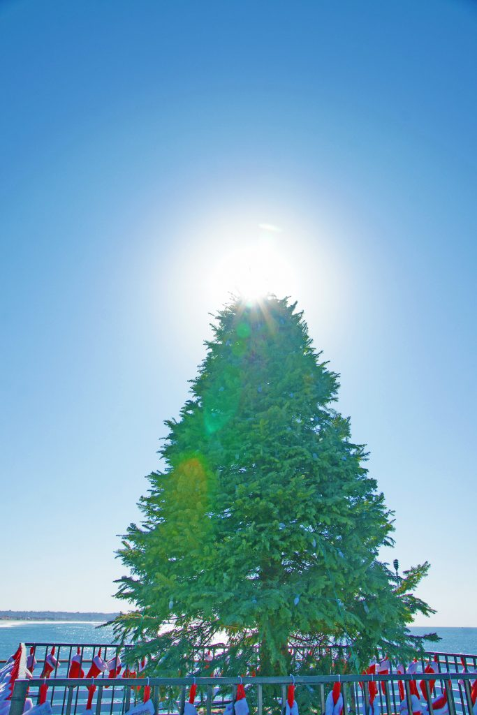 The sun on the top of our Christmas tree.
